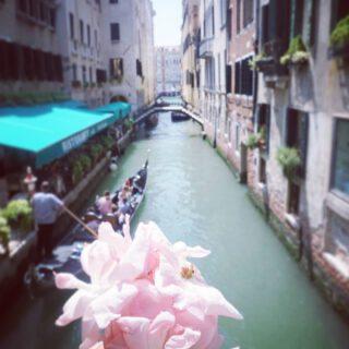 Romance in Venice 💃🍝🇮🇪🍷🥰 #Citytrip #Italy🇮🇪 #Gondola  #Venice #Travel #Venezia #Citytrip #Europe #PrettyLittleTrips #Italy #Clickfor_Venezia #Wonderful_places #Bestdestinations #Vino #Travelgram